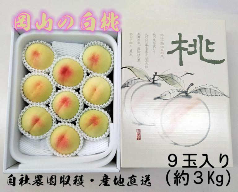 岡山の白桃ギフト用 約3Kg(9玉入り)化粧箱