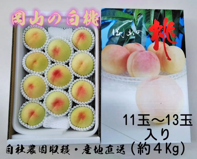 岡山の白桃ギフト用 約4Kg(11~13玉入り)化粧箱